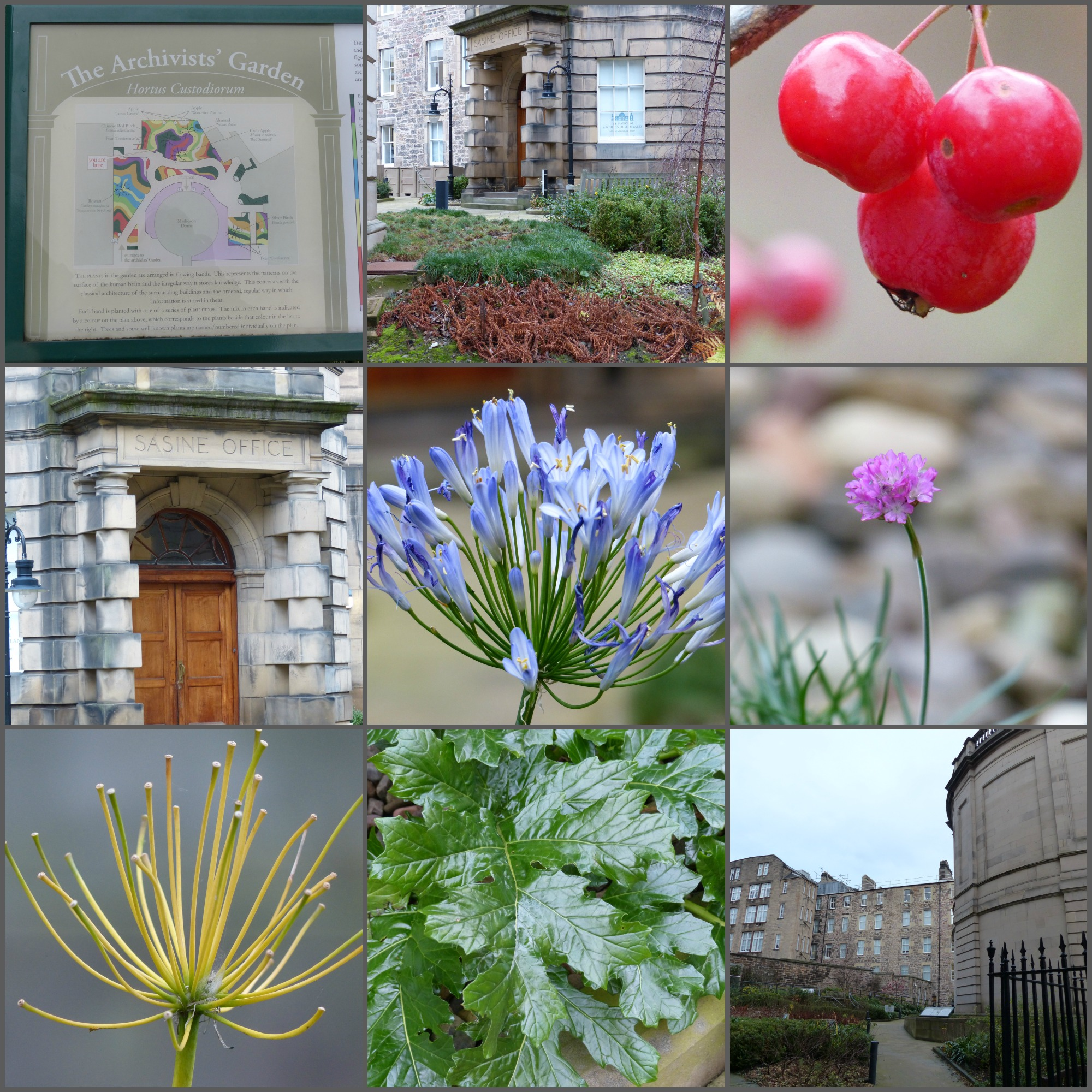 Ancestral Research and the Archivist's Garden, Edinburgh