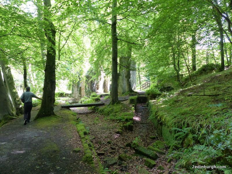 woodland walk roslin glen